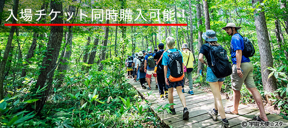 FUJI ROCK FESTIVAL Board Walk Day